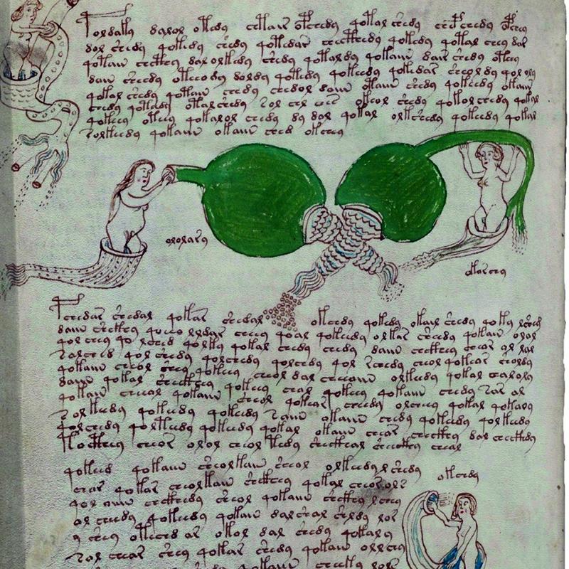 El manuscrito de Voynich fuente