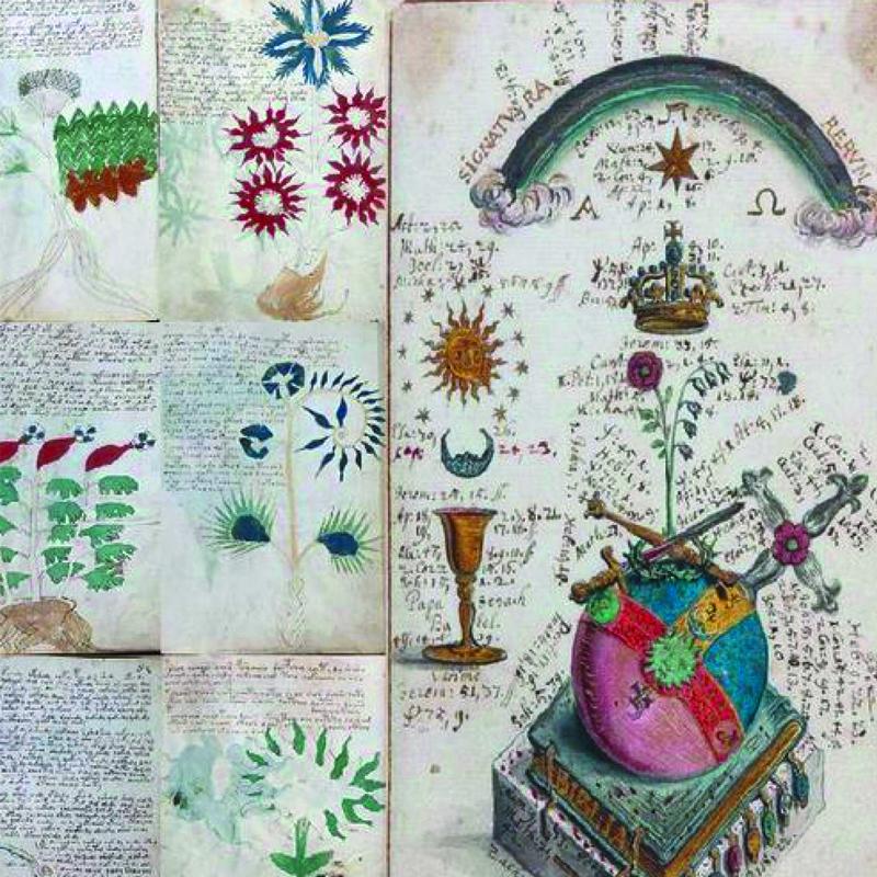 El manuscrito de Voynich varias páginas