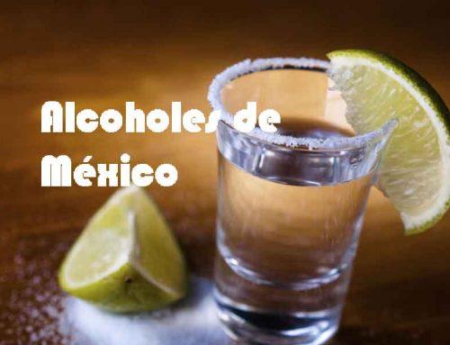 Los mejores alcoholes de México, México es mas que tequila y Mezcal.