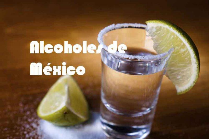 Los mejores alcoholes de México,